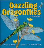 Dazzling-Drgflies-Cover-homepage[1]
